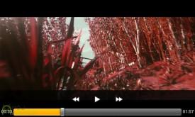 Screenshot_2013-02-11-16-06-00