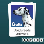 100-pics-answers-dog-breeds