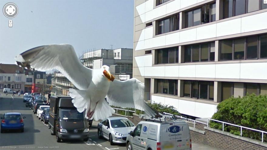 funny-google-street-view-photos-37
