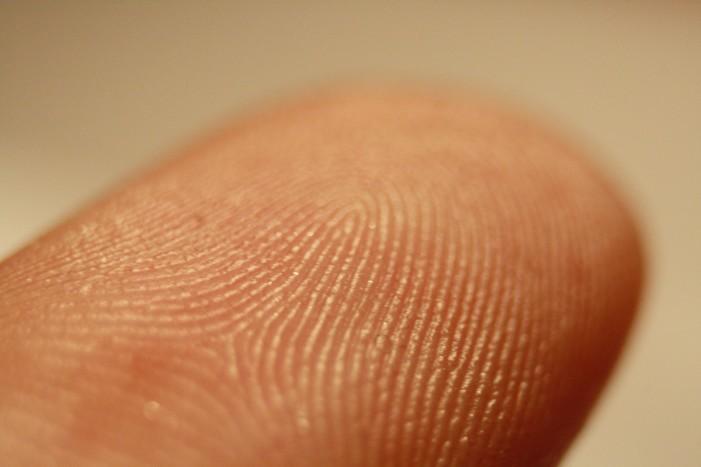 Univerzálny odtlačok prsta by mohol byť kľúčom ku miliónom zariadení