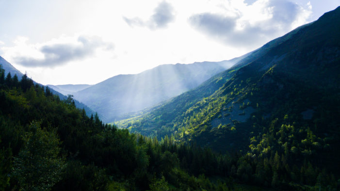 f3shi | SUNLIGHTS | Zariadenie: LG G4