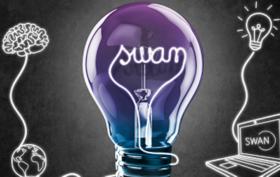 swan_biznis_ziarovka