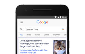 google-fakty-titulka