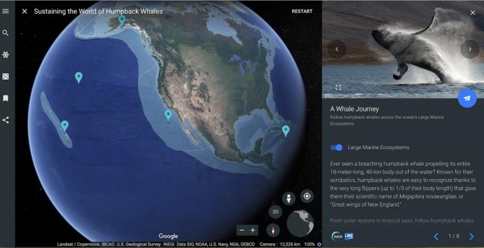 Vďaka virtuálnej realite môžete v Google Earth zistiť viac o živote vráskavcov