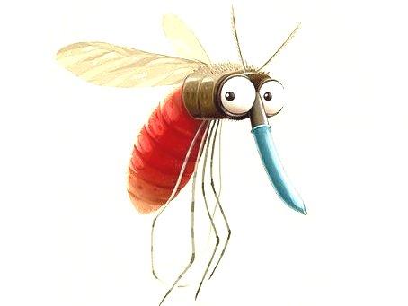 komare v bratislave