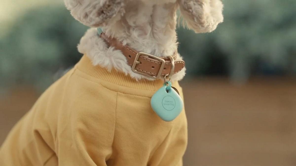 Samsung SmartTag pes